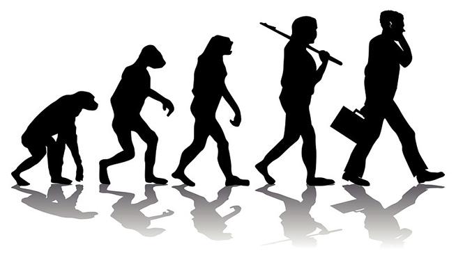 Evolution of man artwork
